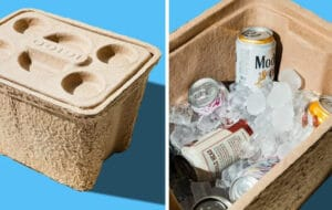 Best Small Cooler Brand 2020 Top 1 Arctic