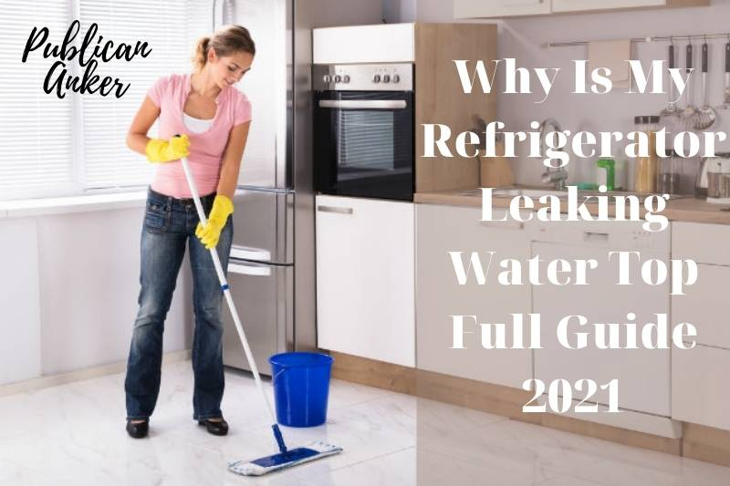 Why Is My Refrigerator Leaking Water Top Full Guide 2021