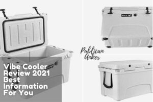 Vibe Cooler Review 2021 Best Information For You